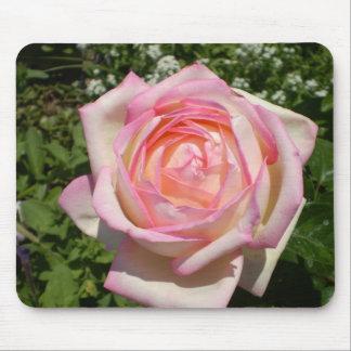 Cojín de ratón, rosas, rosas… tapetes de ratón