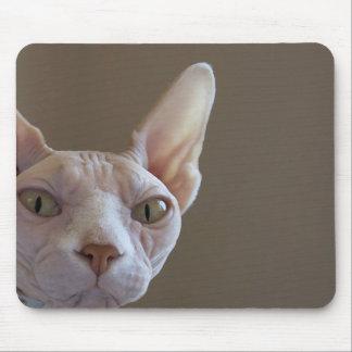 Cojín de ratón sin pelo del gato alfombrilla de raton