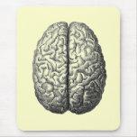 Cojín del cerebro tapete de ratones