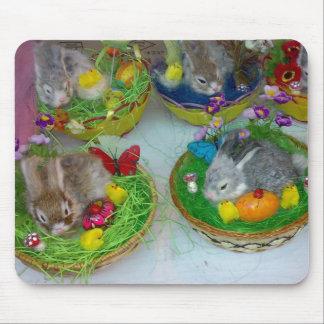 Cojín del conejo mousepad
