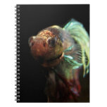 Cojín del cuaderno de los pescados