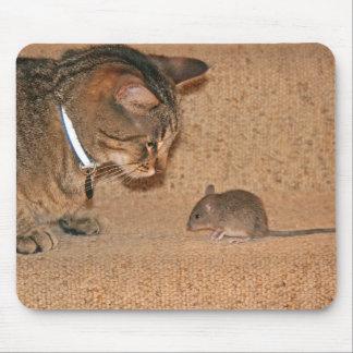 Cojín del gato y de ratón alfombrillas de ratones