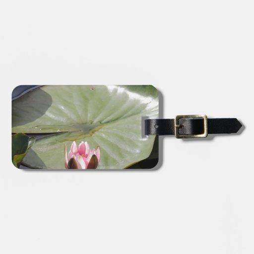 Cojín y flor de lirio etiquetas bolsas