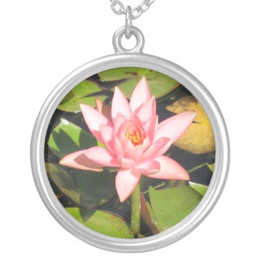 Cojines de lirio y collar rosado de la flor
