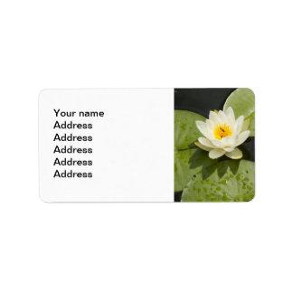 Cojines de lirio y flor de Lotus blanco Etiqueta De Dirección