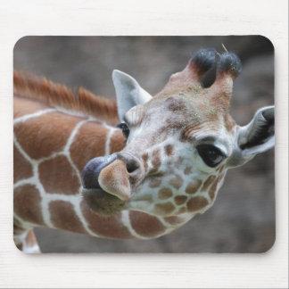 Cojines de ratón de la lengua de la jirafa mouse pad