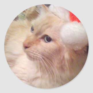Cokie the Cat Christmas Stickers