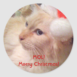 Cokie the Cat MOL! Christmas Stickers