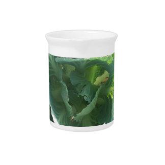 Col de jardín jarras de beber
