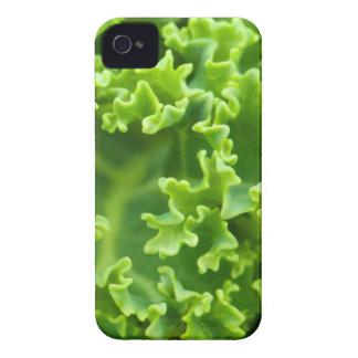 col rizada verde iPhone 4 cárcasa