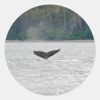 Cola de la ballena de Alaska Pegatina