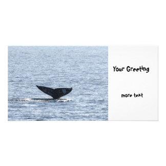 Cola de la ballena gris tarjetas fotograficas personalizadas