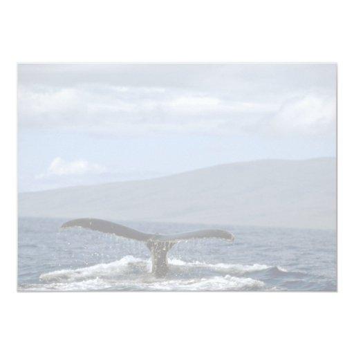Cola de la ballena jorobada, Hawaii Invitación 12,7 X 17,8 Cm
