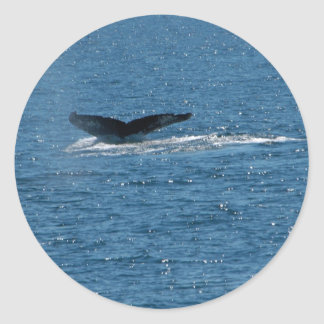 cola de la ballena pegatinas redondas