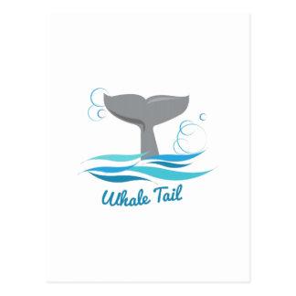 Cola de la ballena postal