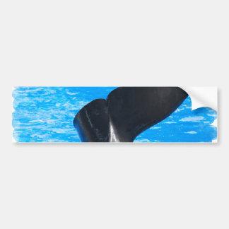 Cola de las pegatinas para el parachoques de una b etiqueta de parachoque