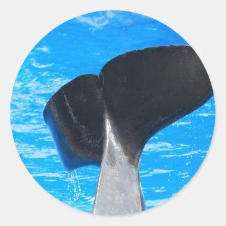 Cola de los pegatinas de una ballena pegatina redonda