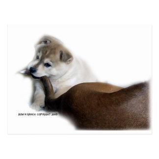 Cola de los perros de perrito tarjeta postal