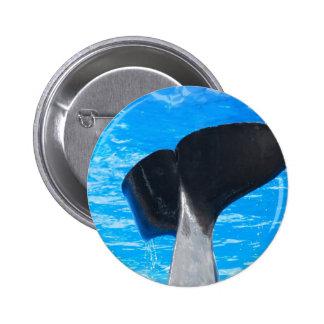 Cola de un botón de la ballena pin