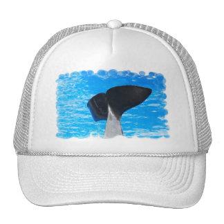 Cola de un gorra de béisbol de la ballena
