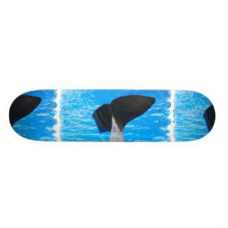 Cola de un monopatín de la ballena