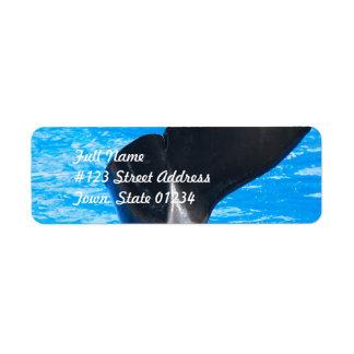 Cola de una etiqueta de correo de la ballena etiqueta de remite