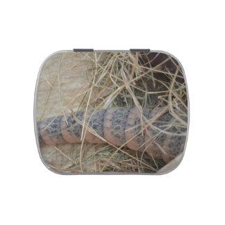 cola del armadillo en imagen del animal del heno frascos de dulces