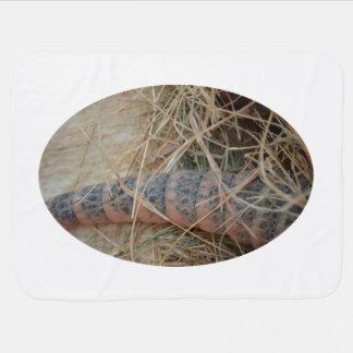 cola del armadillo en imagen del animal del heno manta de bebé