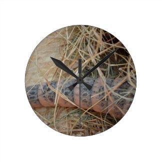 cola del armadillo en imagen del animal del heno reloj redondo mediano