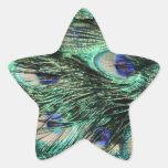 Cola del pavo real (Peafowl), plumas - azulverdes
