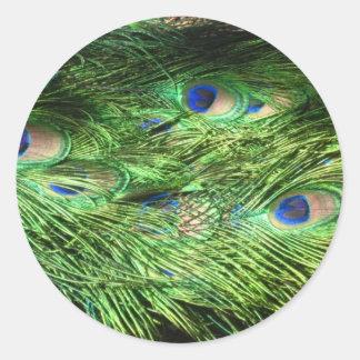 cola del pavo real pegatinas redondas