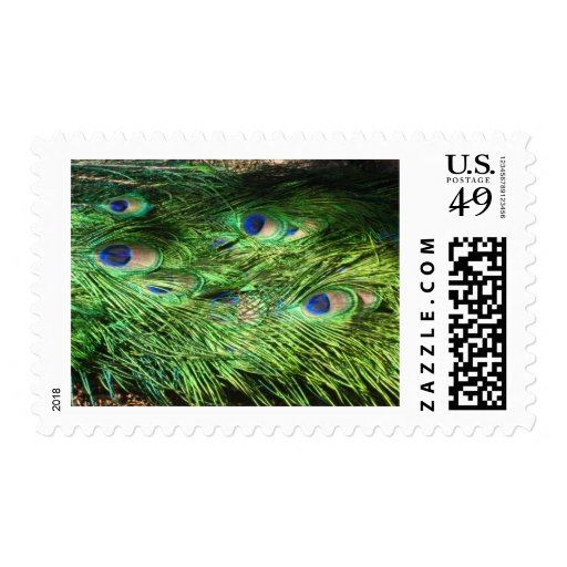 cola del pavo real timbres postales