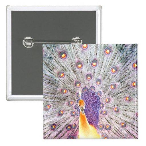 Cola del pavo real y foto de colores invertida cab pin