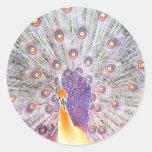 Cola del pavo real y foto de colores invertida pegatinas redondas