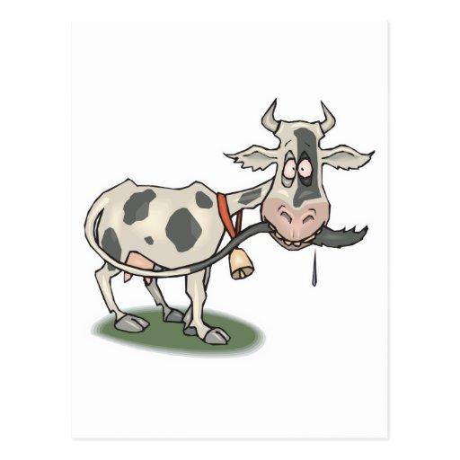 cola penetrante de la vaca divertida