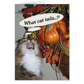 Colas de gato tarjeta de felicitación