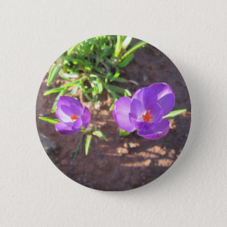 Colburn LiL'Purple Flower Bloom Button