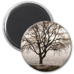 cold and lovely 2 inch round magnet