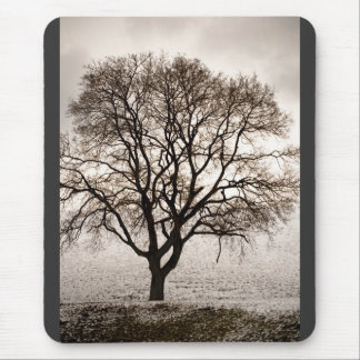 cold and lovely mouse pad