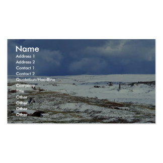 Cold Bay WW II Remains Double-Sided Standard Business Cards (Pack Of 100)