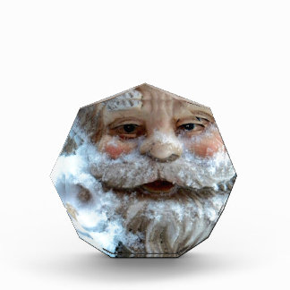 Cold Gnome Acrylic Award