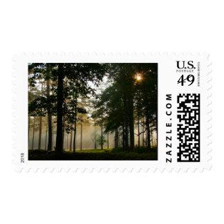 Cold Harbor Stamp