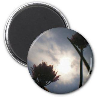 Cold Light of Morning Magnet