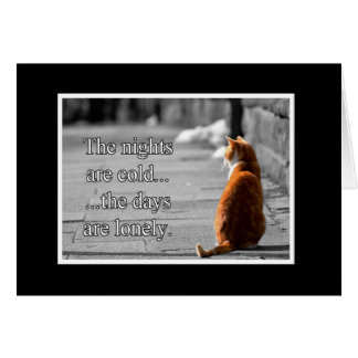 Cold Nights Lonely Days Animal Notecards Card