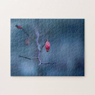Cold rose puzzle