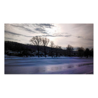 Cold Sun Double-Sided Standard Business Cards (Pack Of 100)