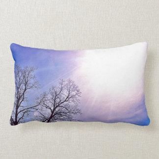Cold Trees & A Winter Sun Nature Art Pillow