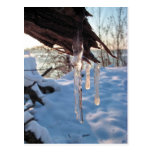 cold winter icicles after first snow storm postcards