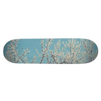 Cold winter morning custom skateboard