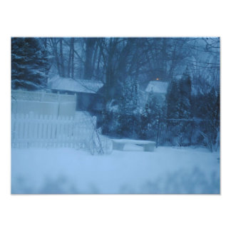 Coldness of Winter Art Photo